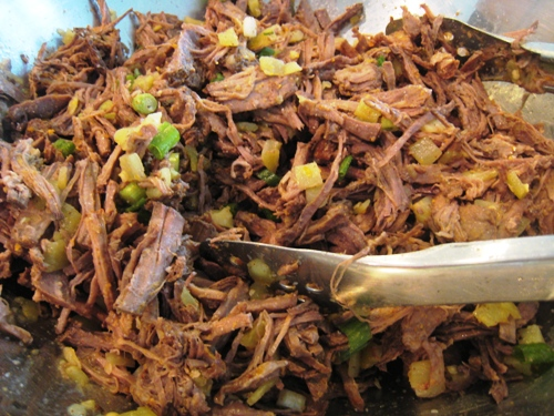 Shredded Beef Filling