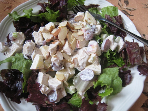orchard chicken salad