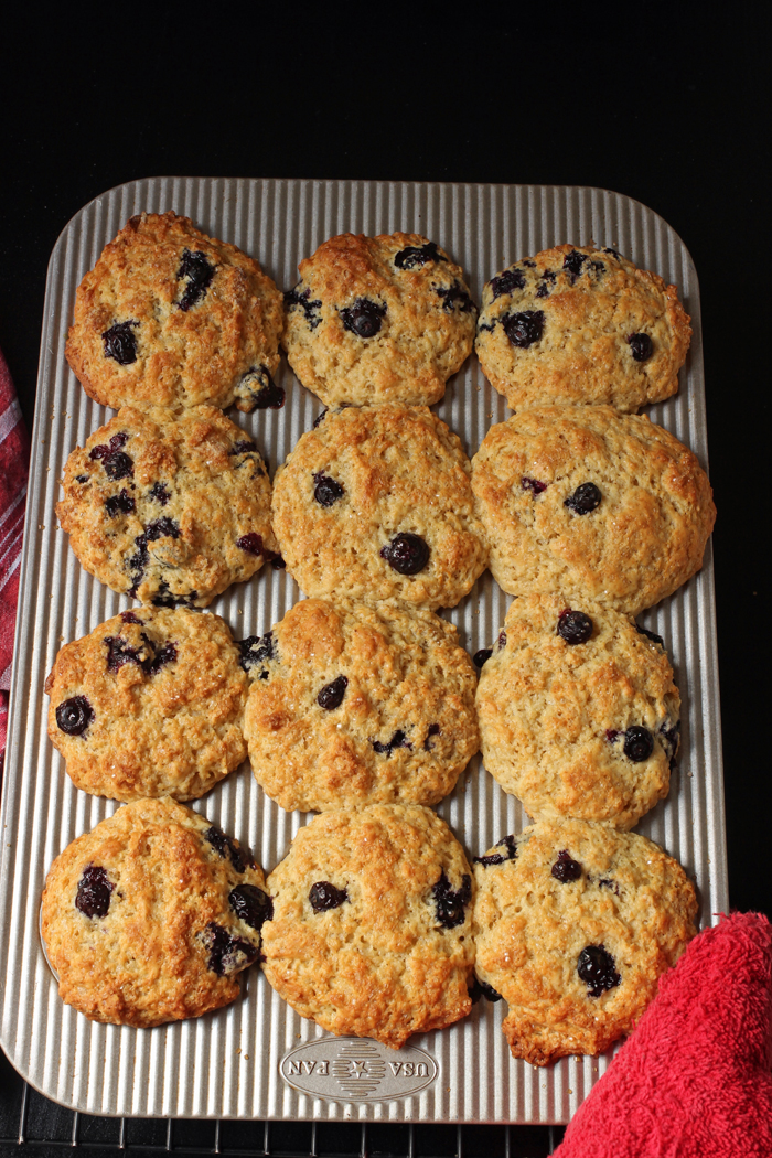 muffin pan of baked blueberry muffins