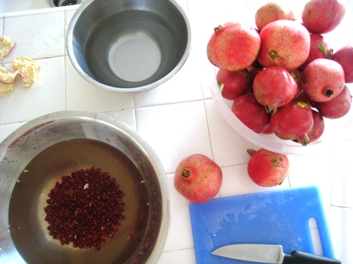 A bowl of water and Pomegranate arils