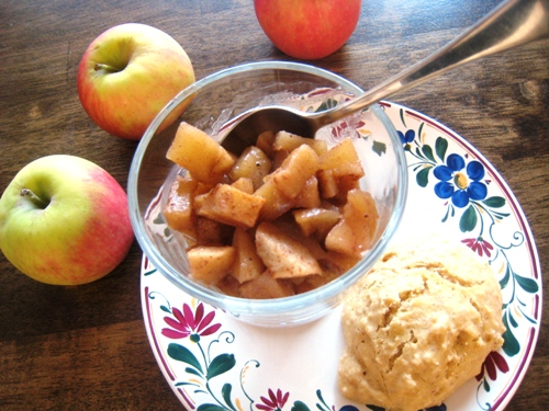a spoon resting in a bowl of apple compote