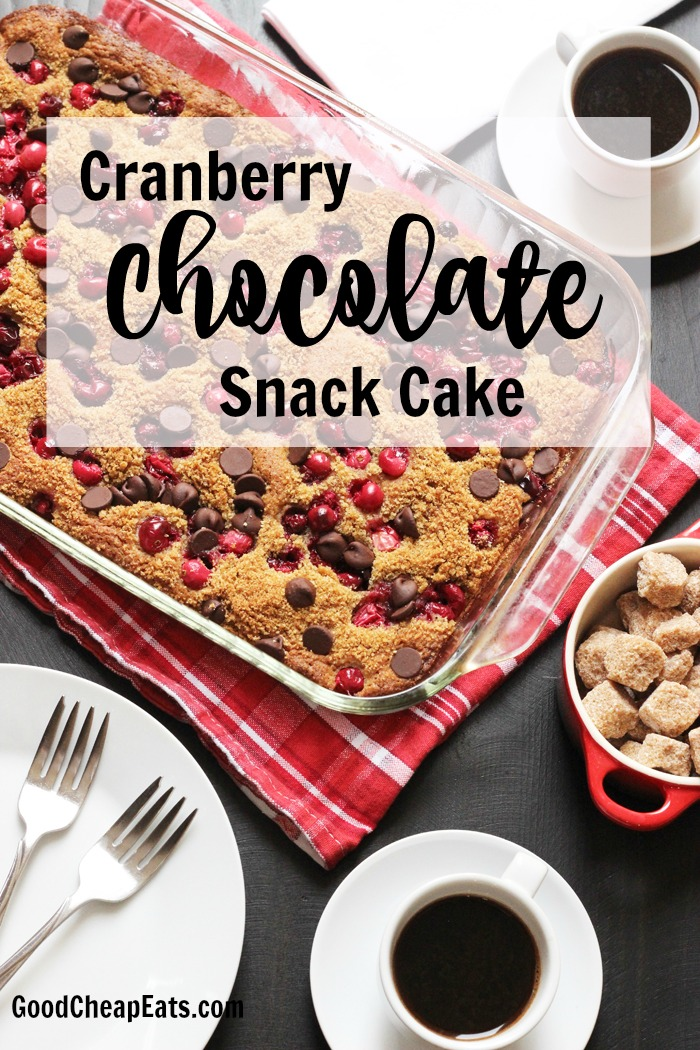 Cranberry Chocolate Snack Cake | Good Cheap Eats