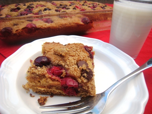Cranberry Chocolate Snack Cake
