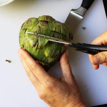 clipping artichoke leaves with scissors