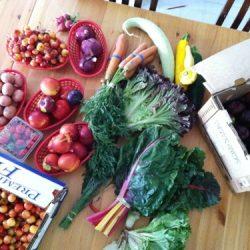 produce box june