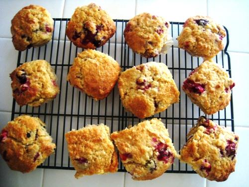 Cranberry Muffins dozen