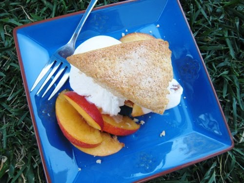 A peach shortcake on a plate