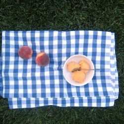 peach sorbet on picnic blanket