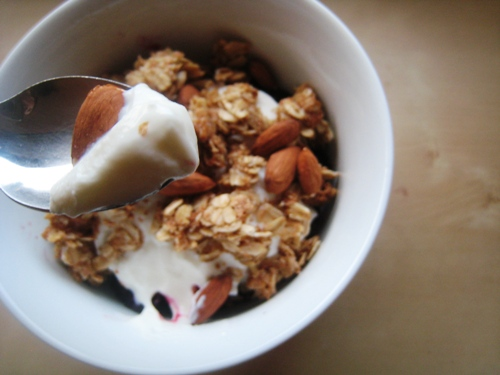 Morning Yogurt and Oats
