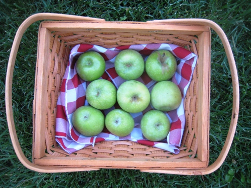 green apples in wooden basket