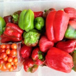 peppers for the freezer
