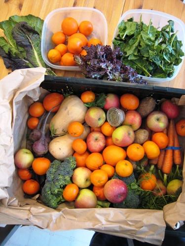 abundant harvest feb