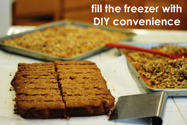 Fill the freezer with DIY convenience