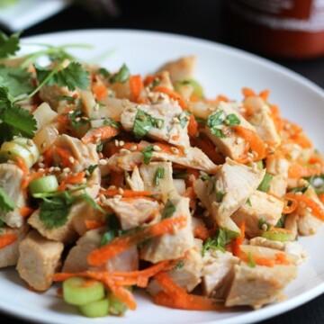 Ginger-Sesame Turkey Salad on a plate