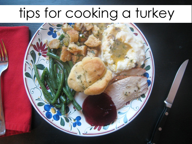 Tips for Cooking a Turkey Good Cheap Eats