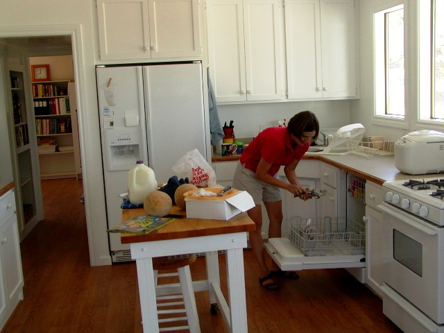 A woman loading the dishwasher