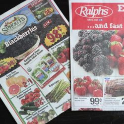 Planning Meals to Match the Grocery Sales