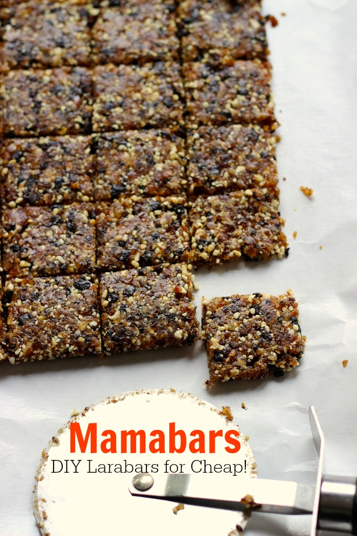 Mamabars - Make DIY Larabars for Cheap!
