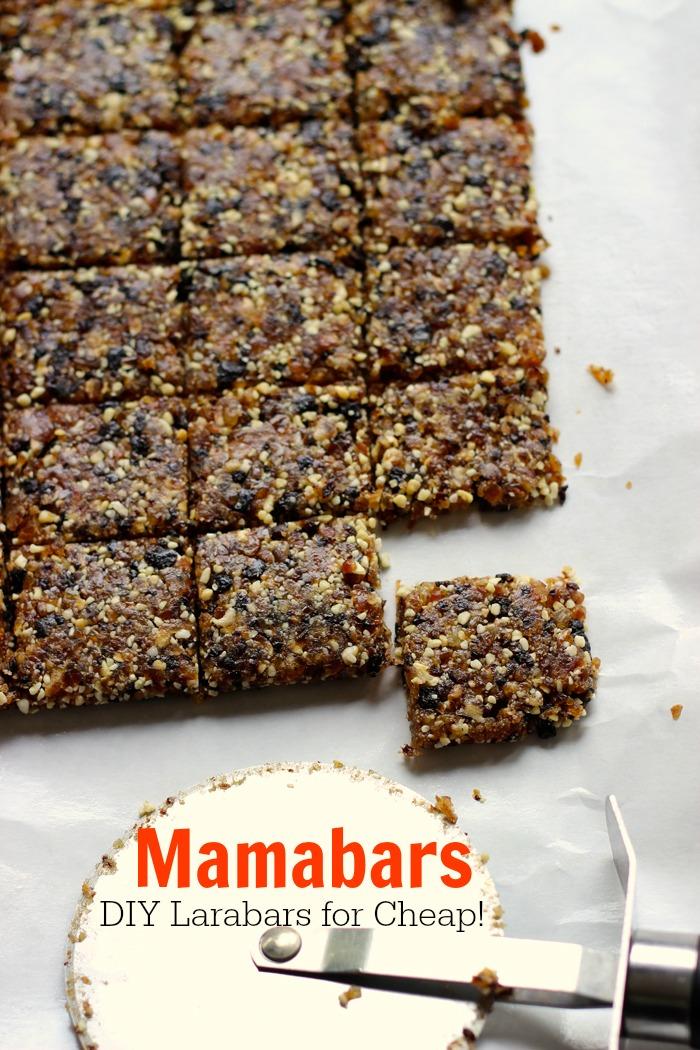 Mamabars - Make DIY Larabars for Cheap!