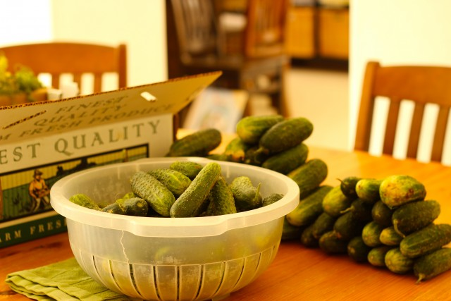 cucumbers in a salad a spinner and more cucumbers on a kitchen table