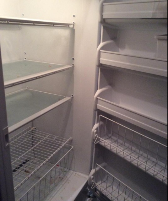 hollie's freezer