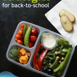 pinterest photo of divided lunch box filled with healthy food