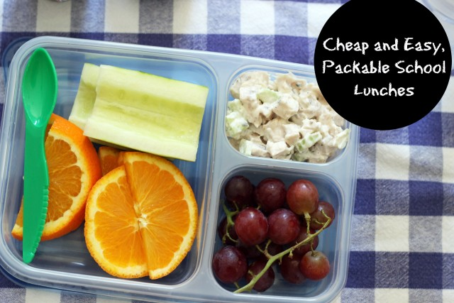 5 Cheap & Easy, Packable School Lunches - Ready to get packing? School lunches don