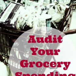 audit your grocery spending