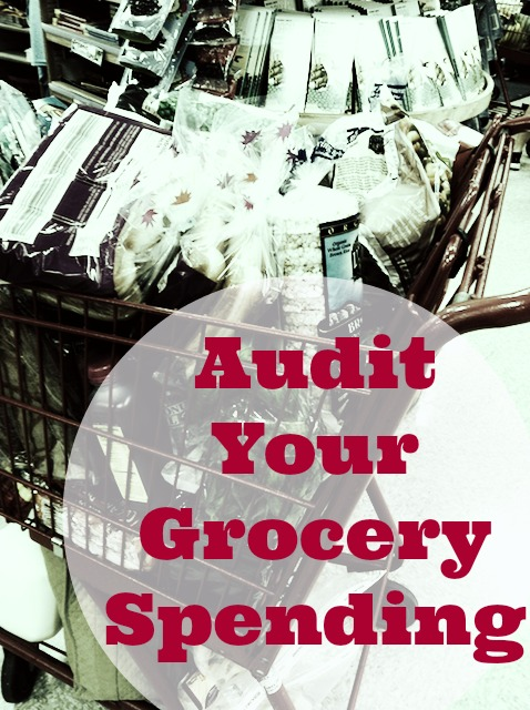 How to Audit Your Grocery Spending - Think you should be spending less on groceries and other food costs than you are? Wondering if your food budget is a realistic one? Then it may be time for a grocery spending audit.