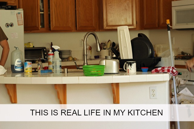 This is Real Life in My Kitchen - Here's a peek into my kitchen and all its problems. I hope you've got some good solutions to my kitchen dilemmas.