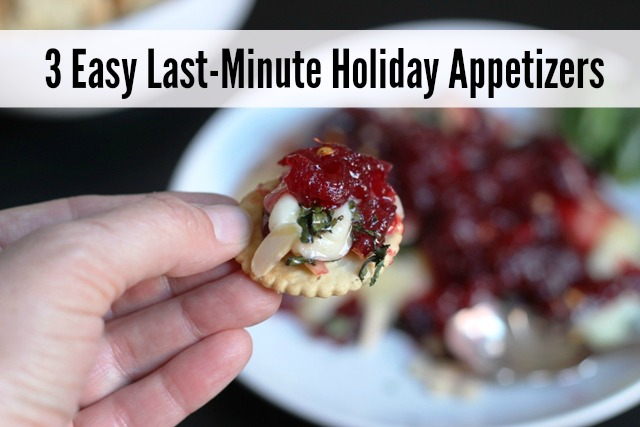 3 Easy Last-Minute Holiday Appetizers - Run out of time? Need a last-minute appetizer to serve guests or take to a pot luck? Check out these three winners.