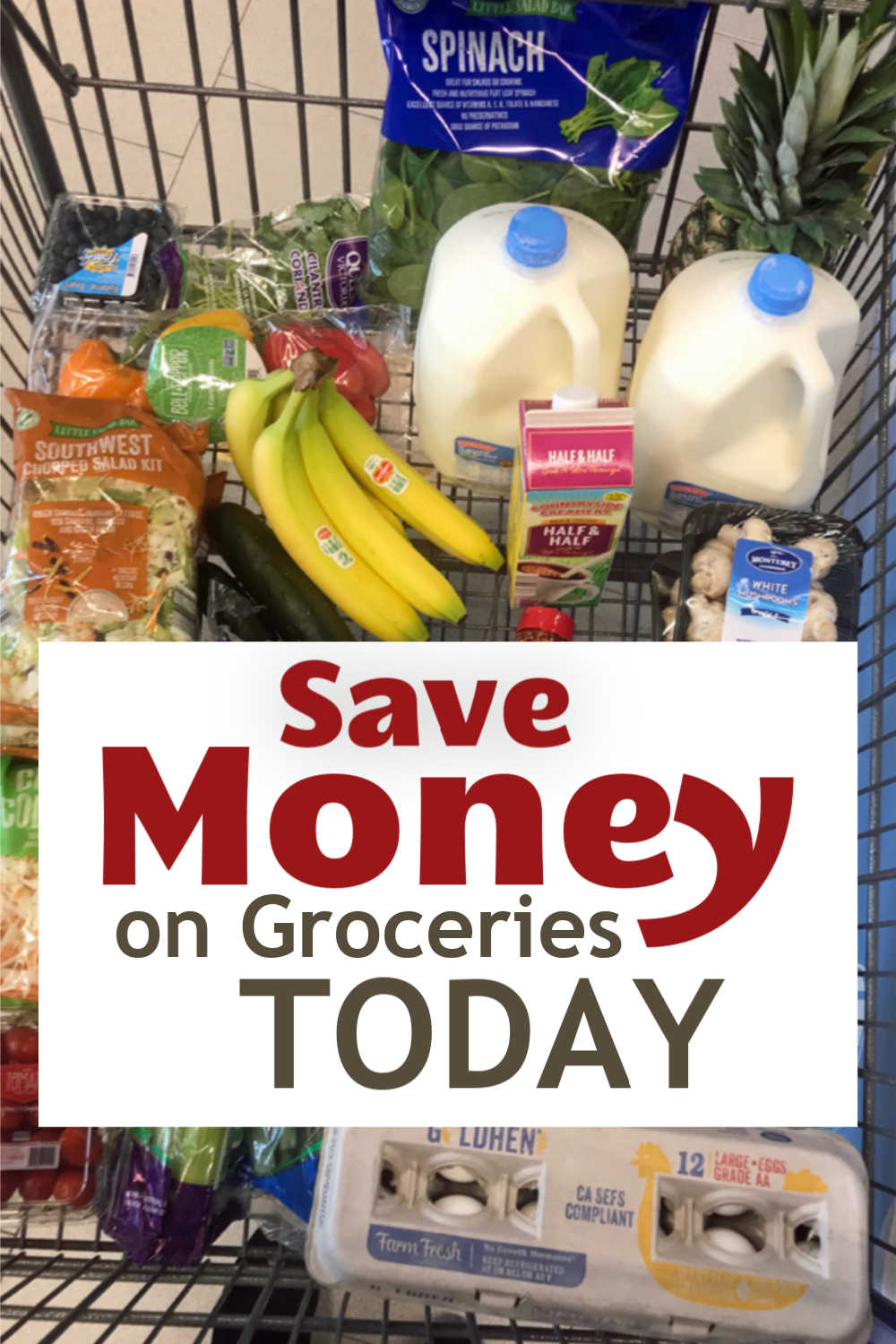 cart of groceries with words, Save Money on Groceries Today