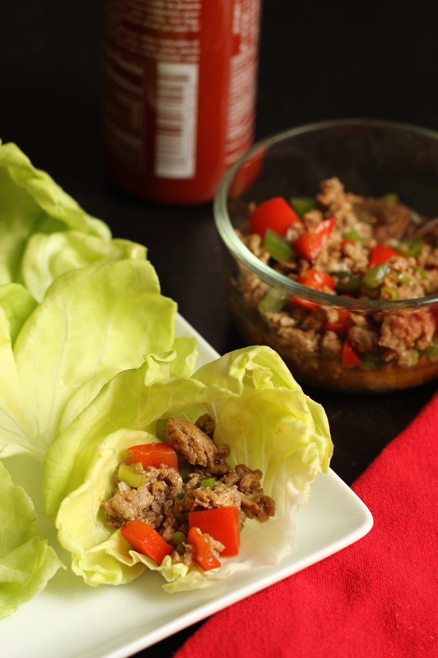 Turkey Pepper Lettuce Wraps | Good Cheap Eats