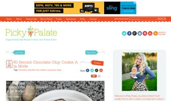 screen shot of picky palate website