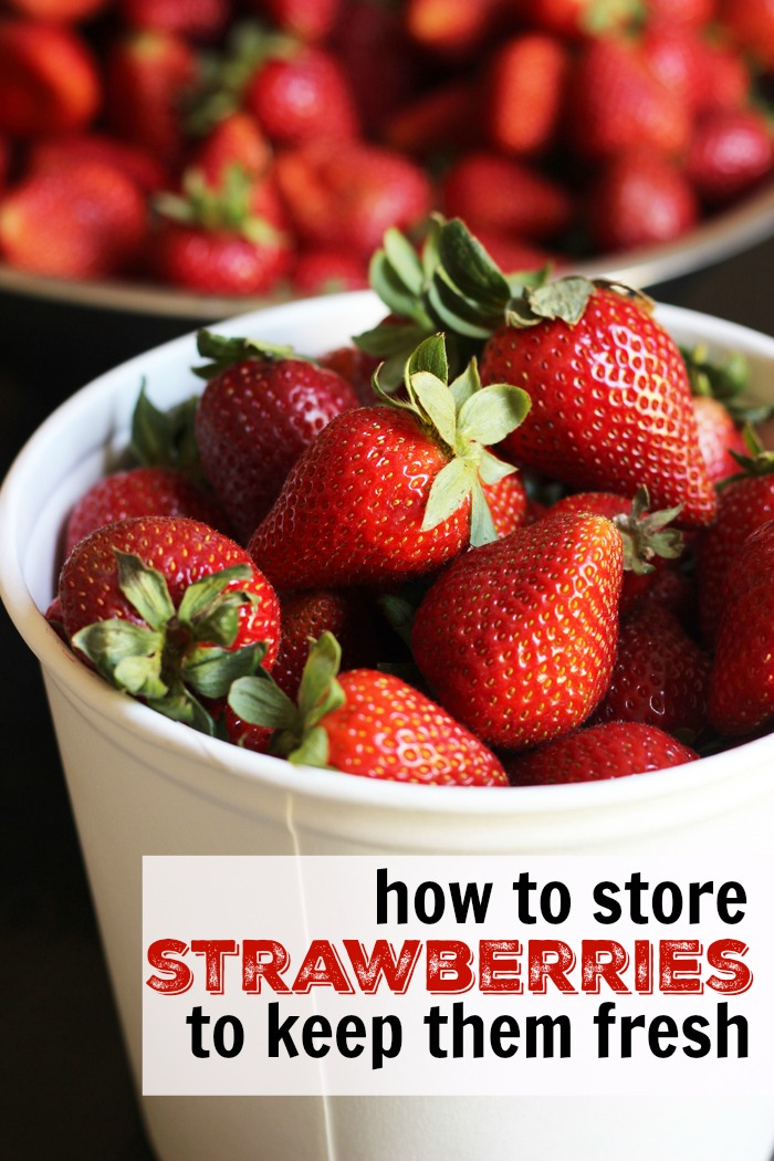 How to Store Strawberries to Keep Them Fresh   Good Cheap Eats