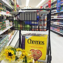 Small Grocery Cart GCE