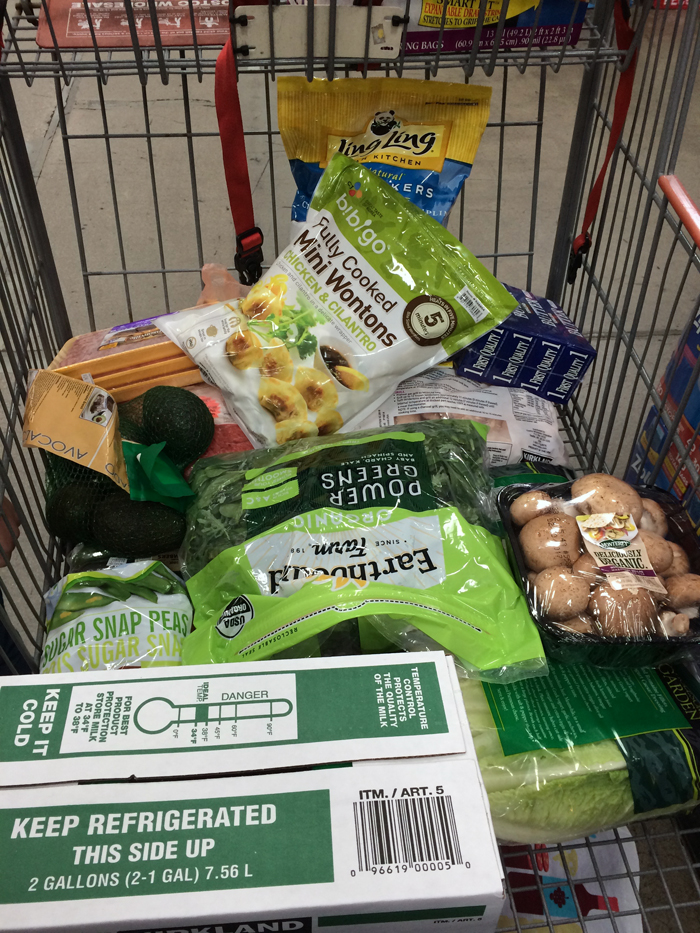 full costco shopping cart