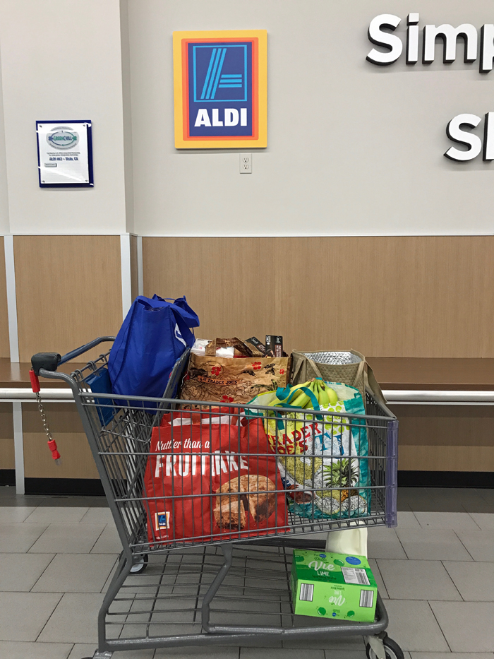 grocery cart in front of Aldi