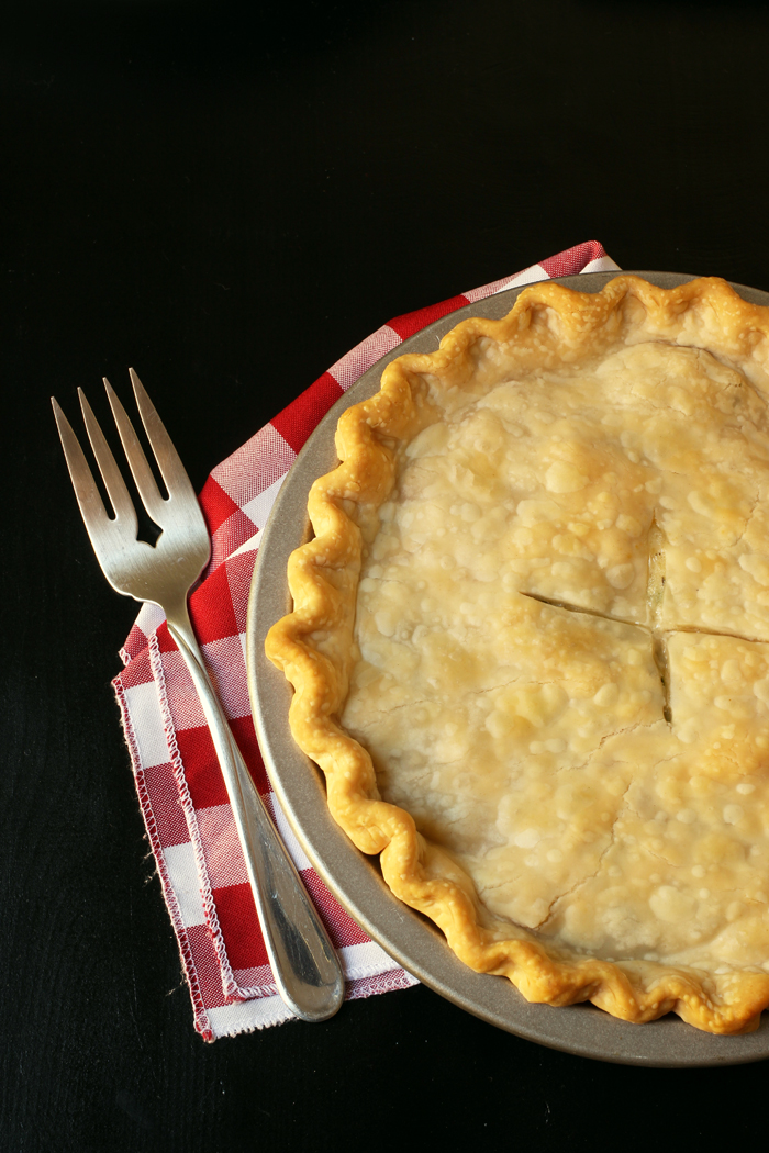 baked chicken pot pie on red checked cloth with serving fork