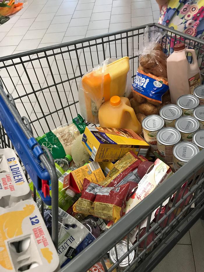 bca92fcb797 Grocery Geek: What We Spent in September - Good Cheap Eats