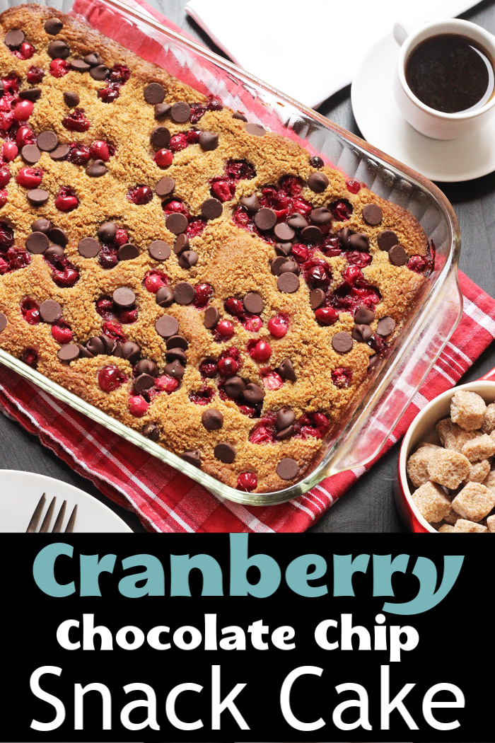 Cranberry Chocolate Snack Cake in pan on table