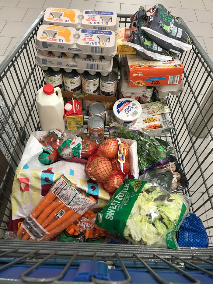 groceries in the cart