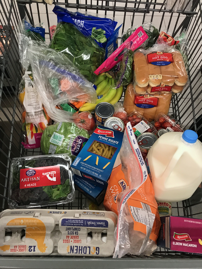 ALDI groceries in cart