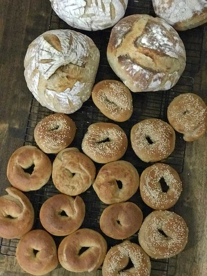 bagels and boules cooling on tray
