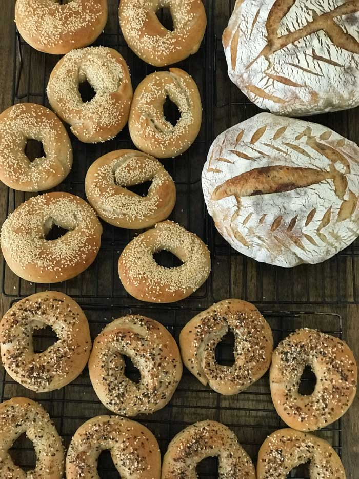 fresh baked bagels and boules