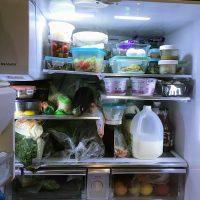 packed fridge