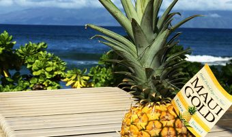 pineapple on lounge chair by ocean