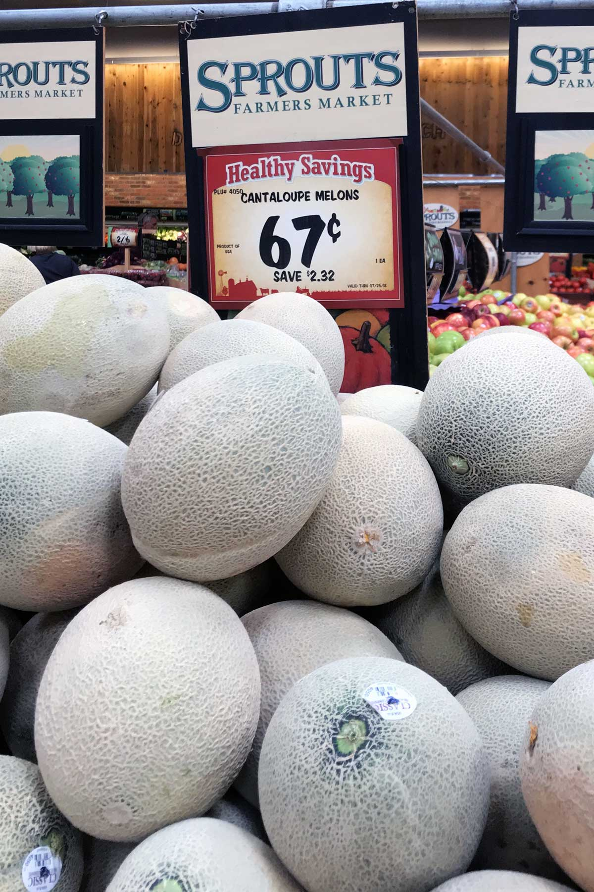 stack of cantaloupe melon on display at sprouts grocery.