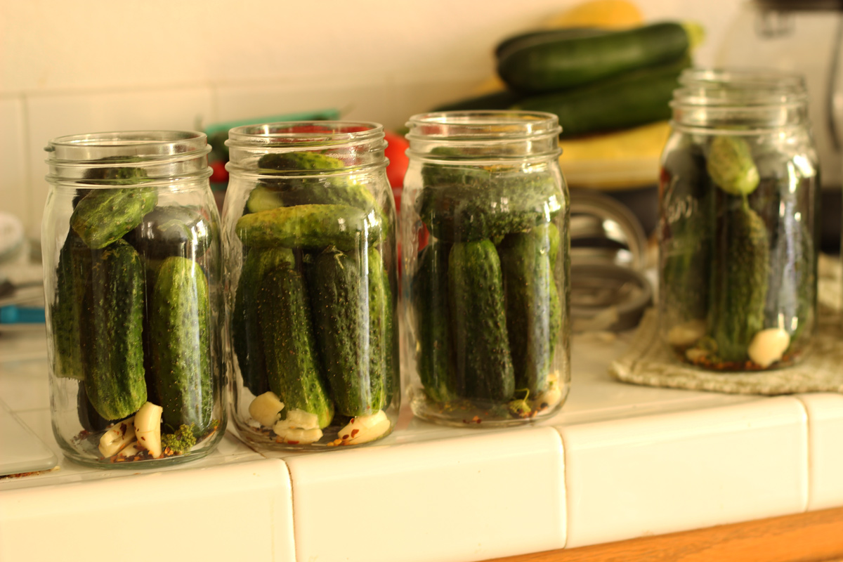 a row of mason jars filled with cucumbers to make homemade pickles.