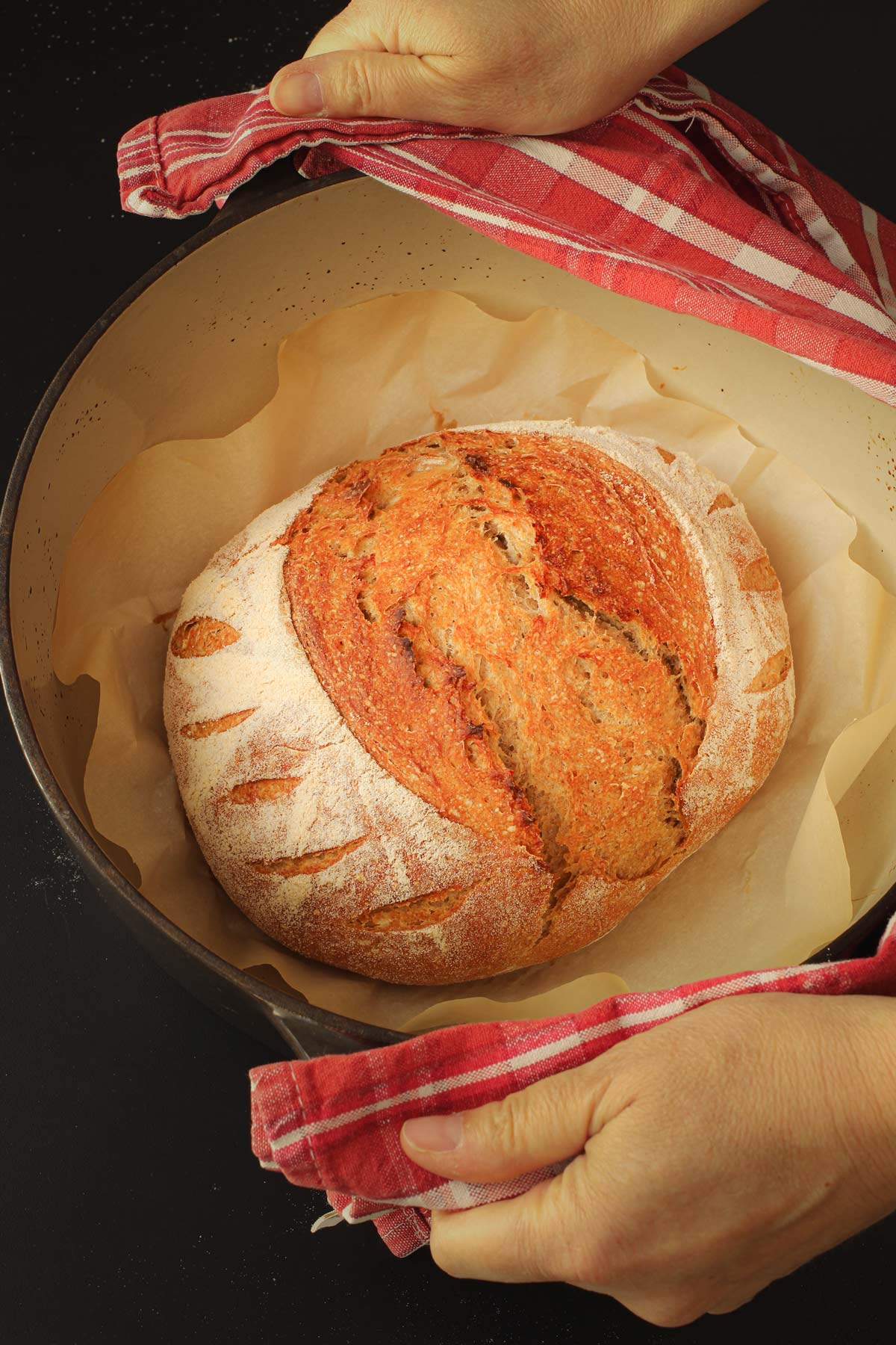hands holding dutch oven with baked boule inside, using red cloth as hot pads.